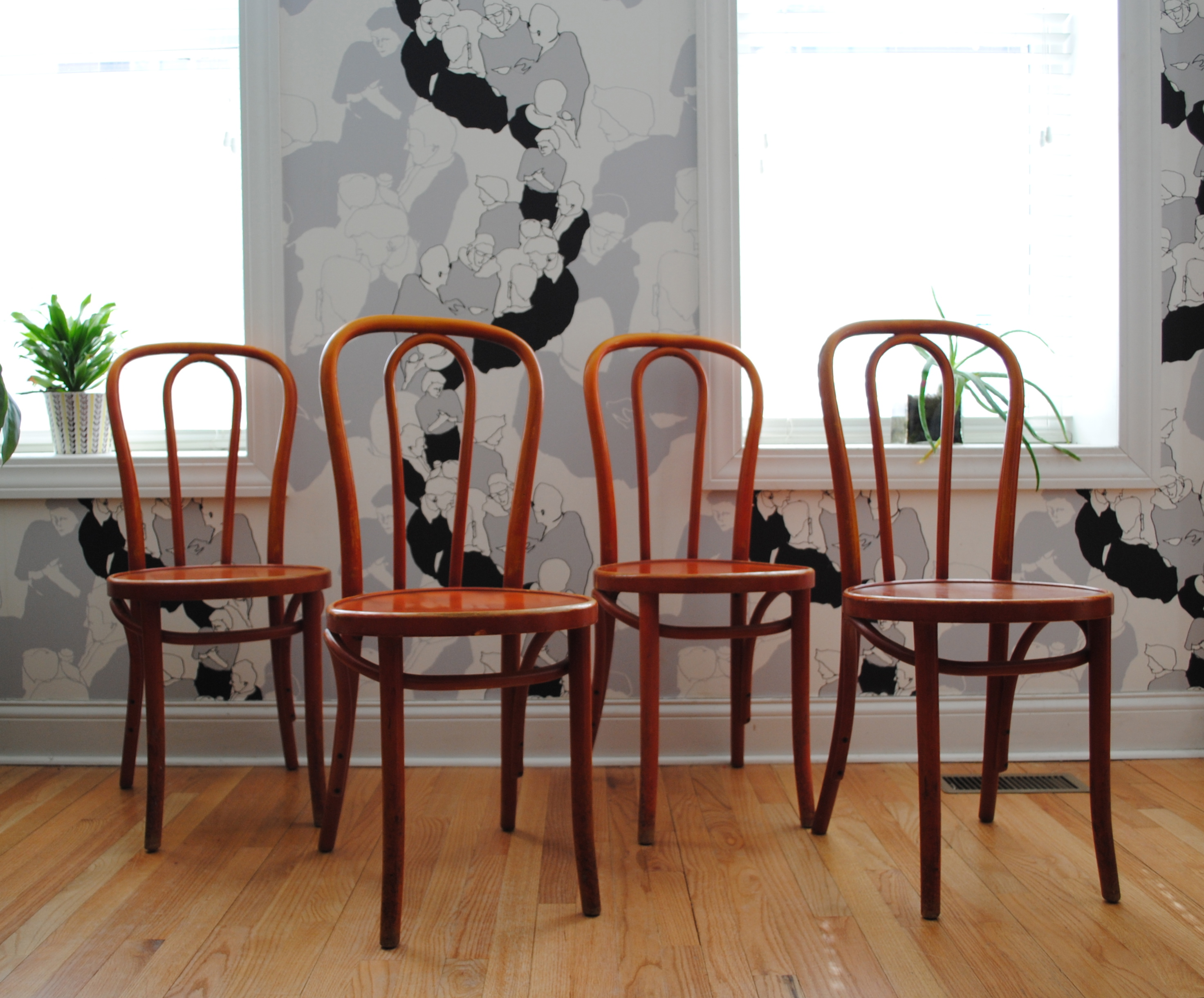 Vintage Thonet Chairs